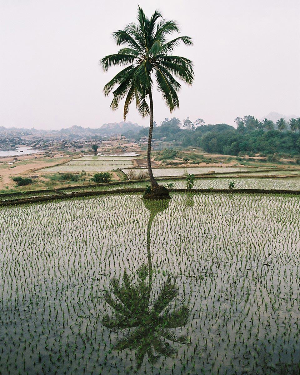 Piethan_Indien_06_Hampi_1200_neu